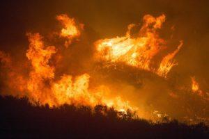 Abholzung und Waldbrände
