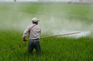 Pestizide im Einsatz