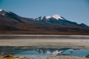 Permafrostböden in der Tundra