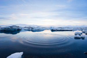 Klimawandel: Arktis eisfrei, Lebensmittel verschwinden und Viren