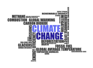 Klimawandel und die Zukunft der Jugend