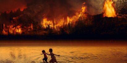 Amazonas brennt und wird vergiftet