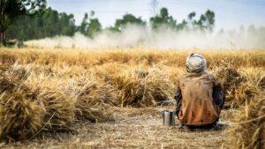 Der Hunger in der Welt wächst rasant
