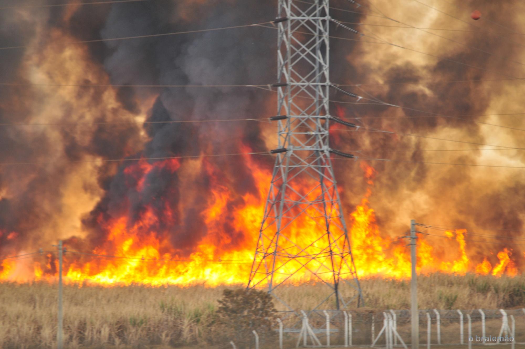 Großbrand durch Trockenheit